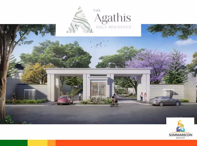 agathis-1