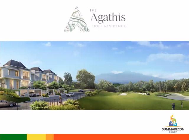 agathis-3